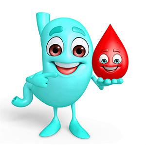 Cholesterin und Trigylceride richtig verstehen – Blutfette