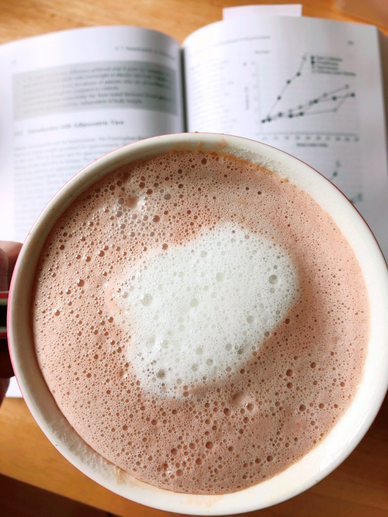 protein kakao anleitung