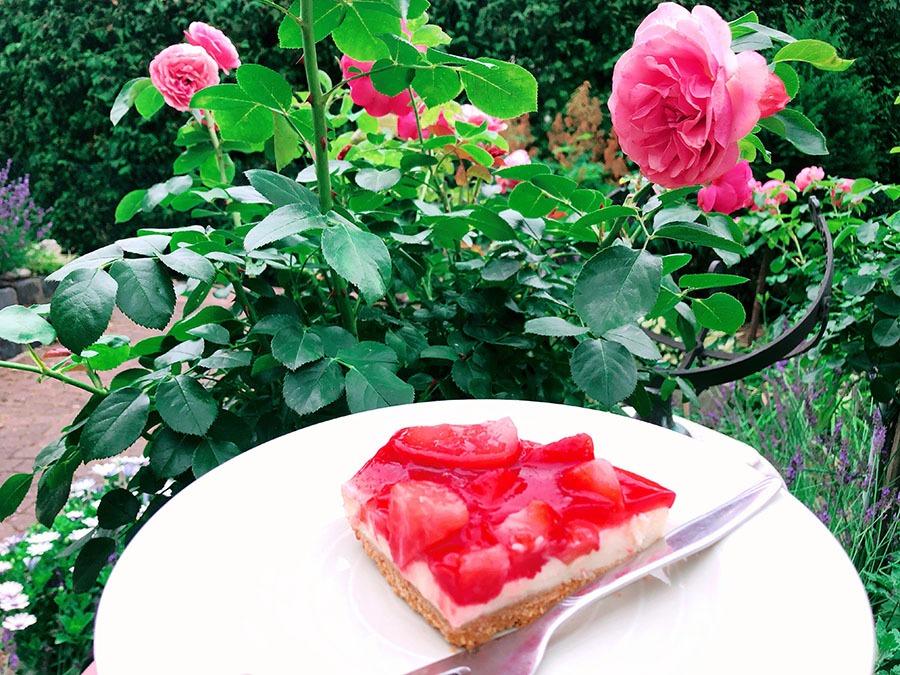 magenbypass frischkaese torte