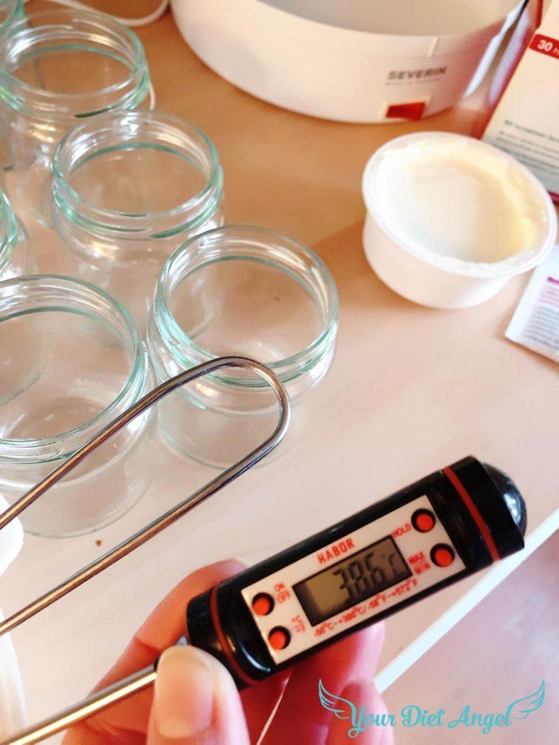 probiotischer joghurt rezept004